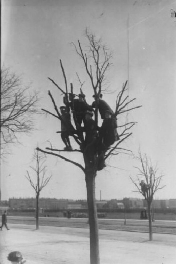 Kids watching the football from nearby treetop. Photo: The National Library of Denmark, photographer Holger Damgaard