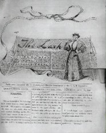 Plate 4. The Lark